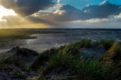 Dune Evening Light | UU-Fotografie – Ulrike Unterbruner