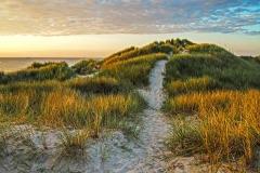 Path through the Dunes | UU-Fotografie – Ulrike Unterbruner
