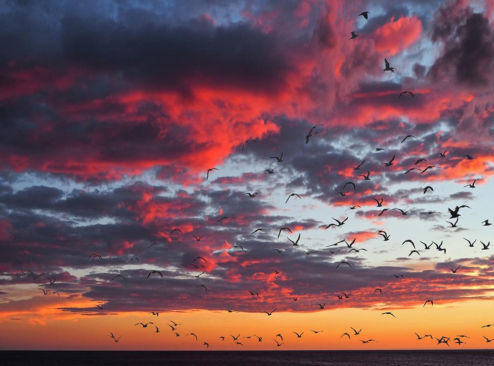 Gorgous sunset | UU-Fotografie – Ulrike Unterbruner